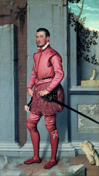 cavaliere rosa