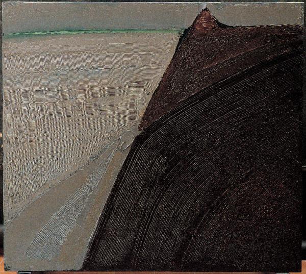 Congdon terra arida 2